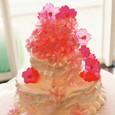 桜の花のWedding Cake